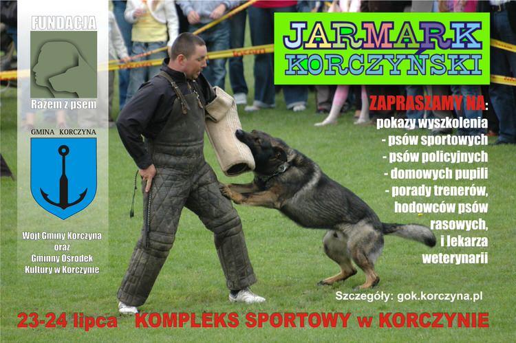 Jarmark Korczyński 2016 - Pokaz wyszkolenia psów obronnych