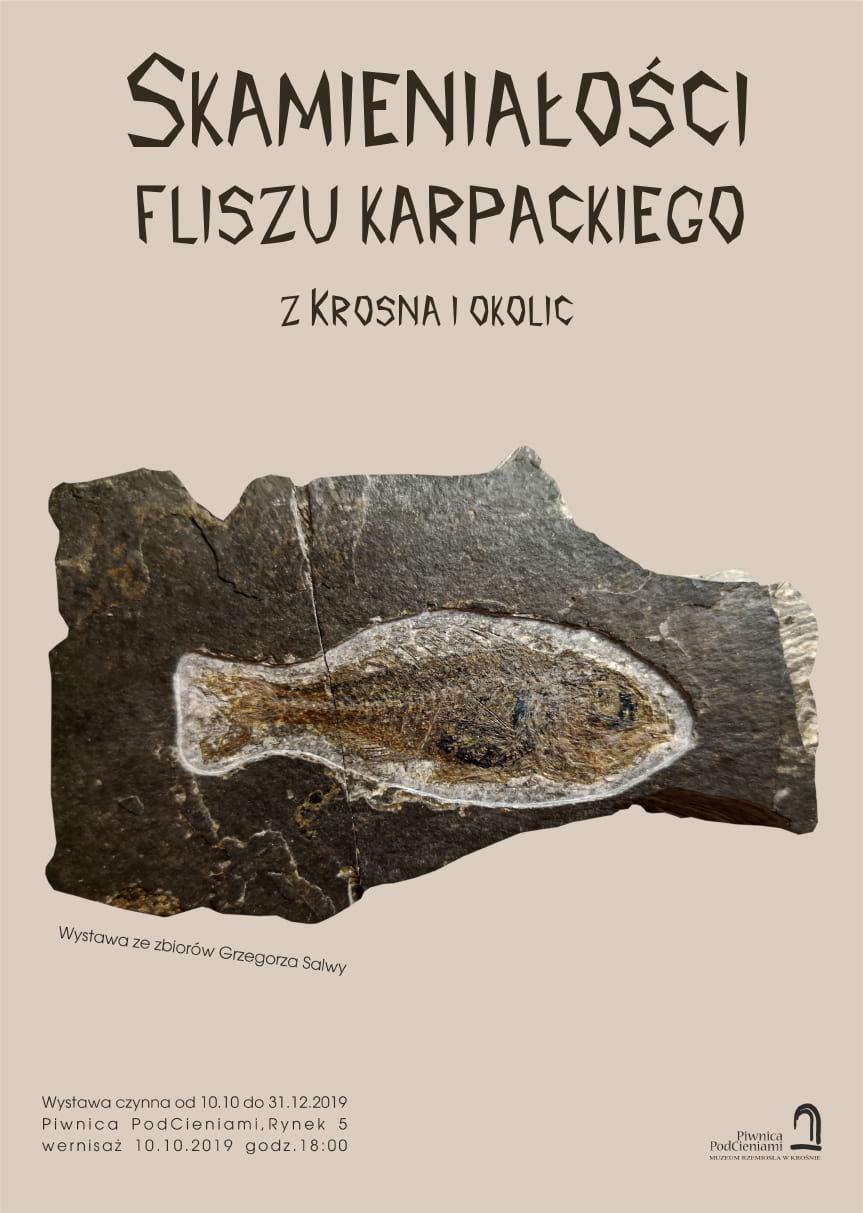 Wystawa paleontologiczna w Piwnicy PodCieniami