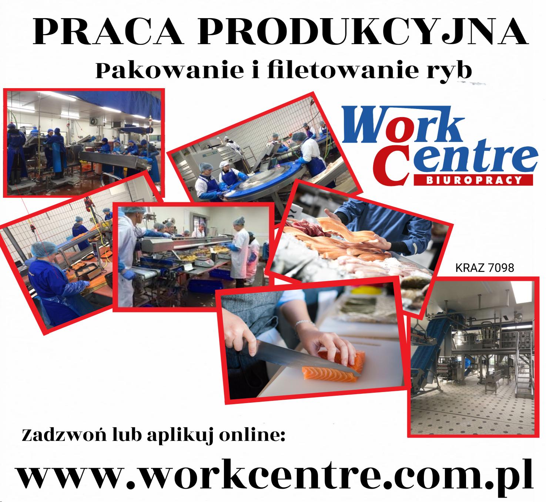Produkcja - praca przy rybach
