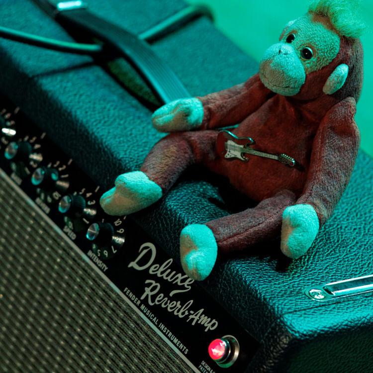 Koncert MonkeyJunk w RCKP