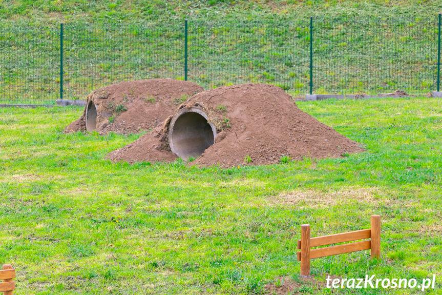 Park dla psów w Krośnie