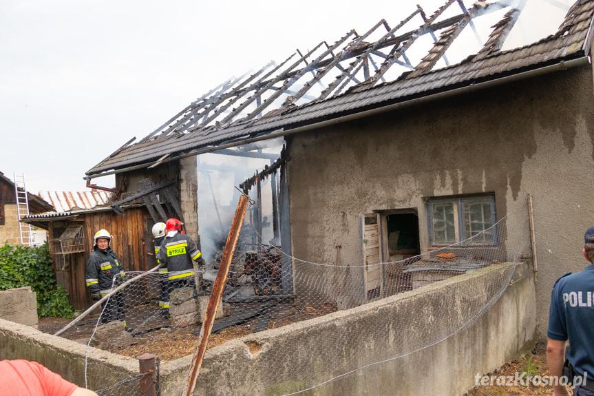 Pożar budynku gospodarczego w Odrzykoniu