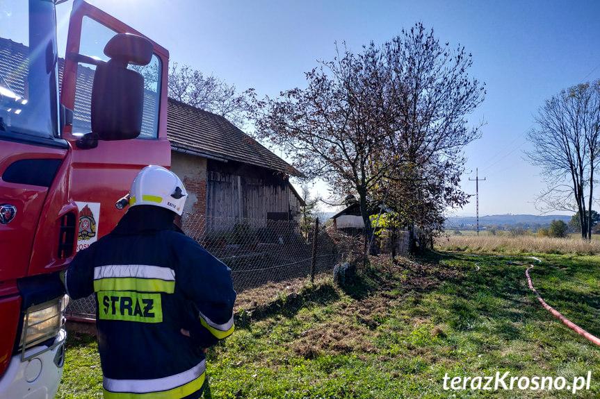 Pożar budynku z drzewem w Odrzykoniu