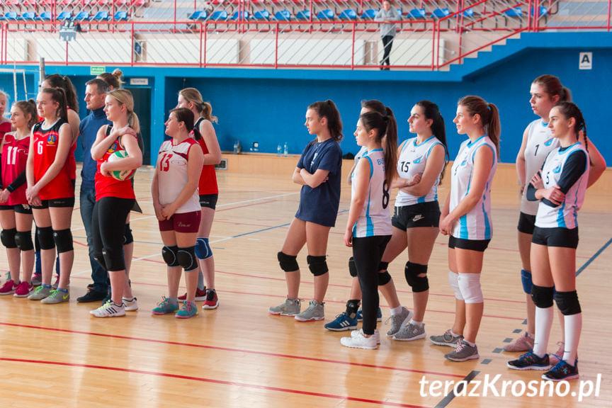 Turniej Piłki Siatkowej o Puchar Dyrektora GOSiR Jedlicze