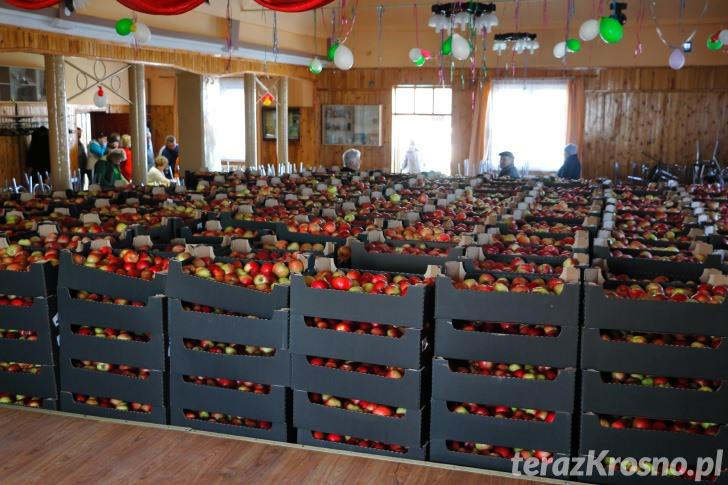 Akcja rozdawania jabłek w Świerzowej Polskiej