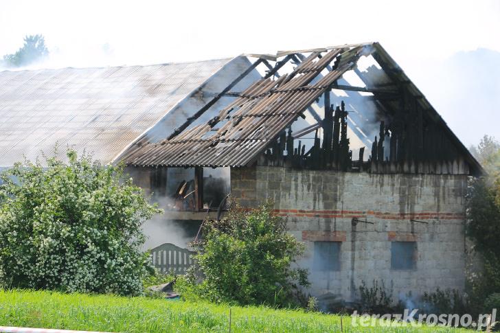 Pożar budynku gospodarczego w Przybówce