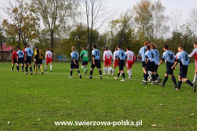 Jasiołka Świerzowa Polska - Victoria Kobylany