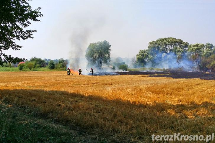 Pożar ścierniska w Świerzowej Polskiej