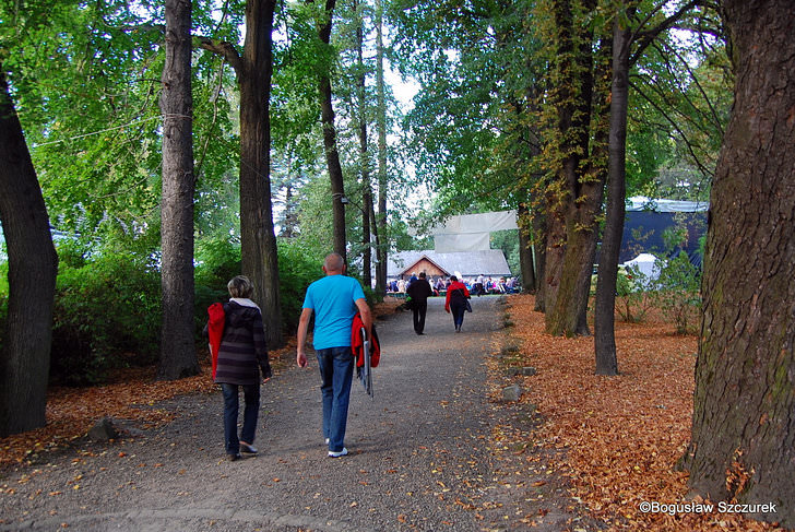 Festiwal Żarnowiec 2015